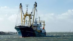The reliance on migrant labour was highlighted last year when hundreds of Russian fishers received special exemptions to enter the country. Photo / 123rf