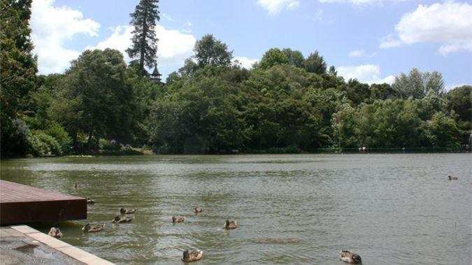 Hamilton Gardens (via Wikimedia)