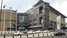 Record numbers through Te Papa's doors