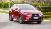 Bob Nettleton: Lexus NX Turbo beautifully built, but lacking power