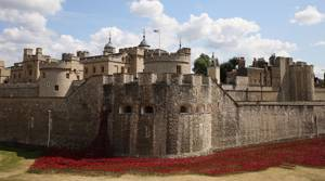 PHOTOS: The Tower of London Remembers