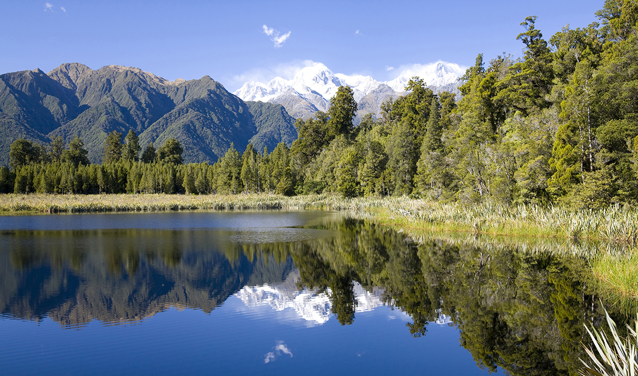 environmental law in new zealand Bret c birdsong,adjudicating sustainability: new zealand's environmental court,  and environment law in new zealand preliminary assessment of the resource.