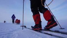 MP skis to North Pole to save kokako