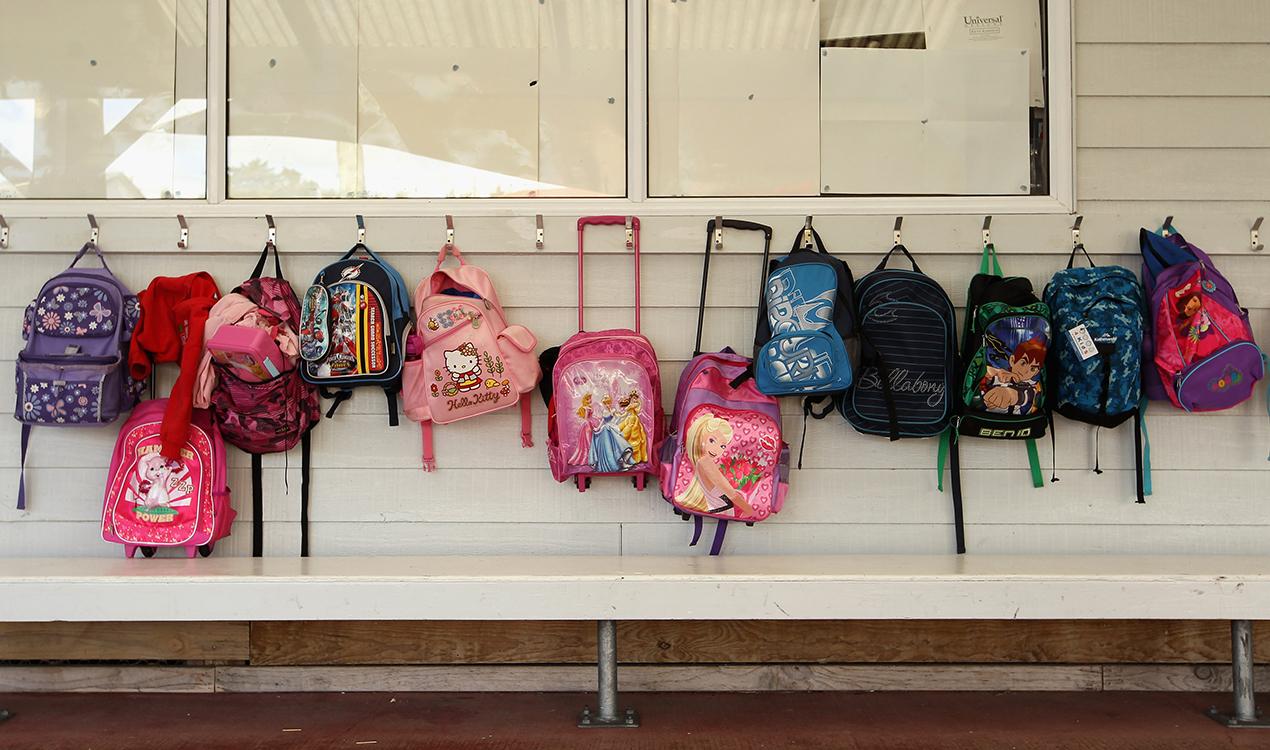 Primary school pass rates flat-lining