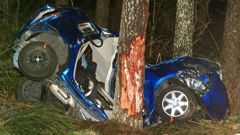 Bharatbhai Patel was killed when his car hit a tree in Kaingaroa Forest on Sunday (NZ Herald)