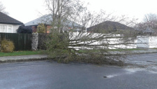 PHOTOS: Wild weather hits across NZ