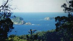 Kermadec Island (Photo / Supplied)