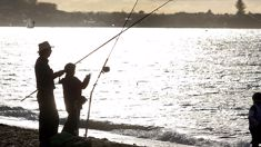 Recreational fishing under dire threat