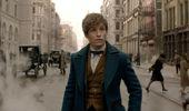 Darren Bevan: Fantastic Beasts and critic-proof franchises
