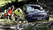 Two injured, cars crushed by falling tree at Cornwall Park