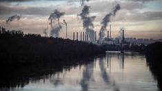 Rachel Smalley: Window of opportunity for climate change won't stay open forever
