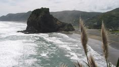 Swimmer missing at Piha