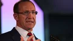 Health Minister Andrew Little. (Photo / File)