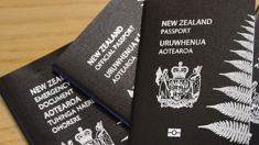 Visa frustrations for Kiwis wanting to visit South Africa mounting