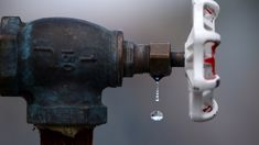 Lower Hutt to consider reducing chlorination in water