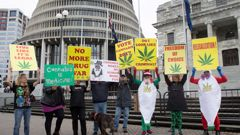 Cannabis law reformists rallied outside Parliament (Mark Mitchell).