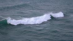 Oil spill off the coast of Oamaru