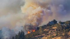 Eleven homes have been destroyed as firefighters continue to battle a fire that has been burning in Christchurch's Port Hills for more than three days. (Christchurch City Council)