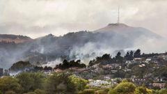Photo / Christchurch City Council