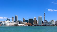 Record-breaking migration to NZ