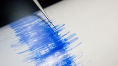 Magnitude 4.6 earthquake hits lower North Island