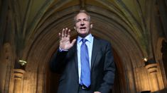Peter Griffin: Tim Berners-Lee criticises the internet and Apple's tax controversy
