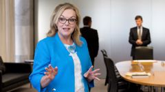 Energy Minister Judith Collins. Photo / Mark Mitchell