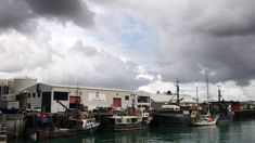 MPI: Nothing wrong with fishing industry monitoring itself