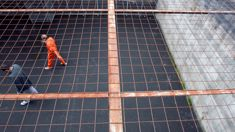 Corrections not doing enough to reduce Maori reoffending: Tribunal