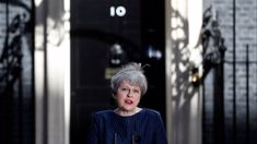Nina Dos Santos: Political drama as UK PM announces snap election