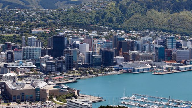 Wellington city councillors have approved a new Wellington Town Belt management plan. (Mark Mitchell)