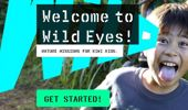 Paul Ward: New website aims to get Kiwi kids more connected with nature