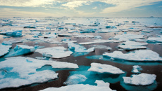 Arctic thaw could cost trillions