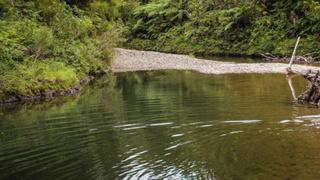 Damning report: NZ fresh water getting dirtier