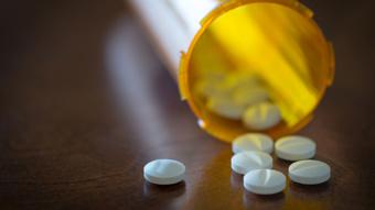 Siouxsie Wiles: Global rise in antibiotic resistance