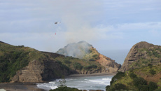 Scrub fire burns at West Auckland beach