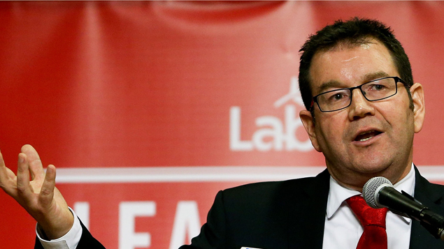 Labour's finance spokesman Grant Robertson has been laying out his ideas at the party's congress this morning. (Getty)