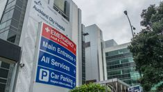 Tim Reen: Atmosphere at Auckland DHB 'toxic and insidious'
