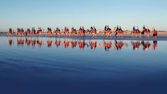 Mike Yardley: Broome with a view