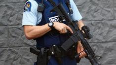Cops renew calls for guns