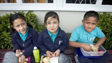 Industry adopts water-only policy for primary schools