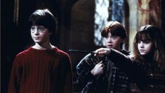 Andrew Dickens: Harry Potter a shared touchstone
