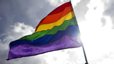 Homosexual conviction legislation introduced