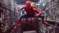 Francesca Rudkin: Spider-Man: Homecoming