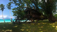 Megan Singleton: Glorious Vanuatu