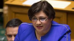 Metiria Turei says she isn't encouraging people to break the law, rather she's  trying to tell people what it's like to be in such a situation. (Photo \ NZ Herald)