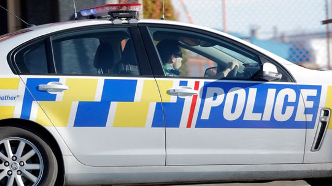 NZ Police (Image / File)