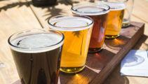 Craft beer movement set to keep growing