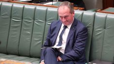 Keiran Gilbert: Barnaby Joyce in deep trouble for NZ citizenship