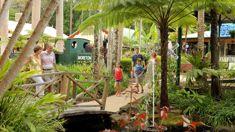 Mike Yardley: Sunshine Coast for Families